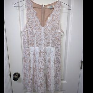 NWT White lace dress from Francescas